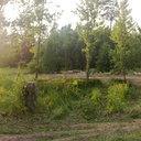 Пионерский лагерь Улыбка 02 июля 2011 года (27)